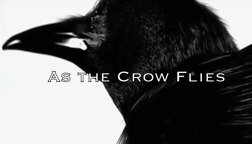 As The Crow Flies.mp4